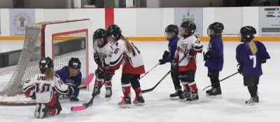 Youth hockey doing well in three communities