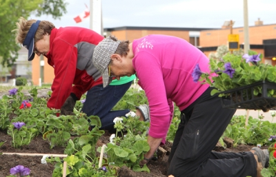 Boissevain in new Canada 150 category for Communities in Bloom challenge